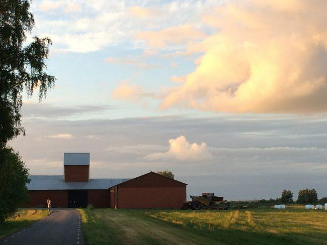 mjoelb_farm1